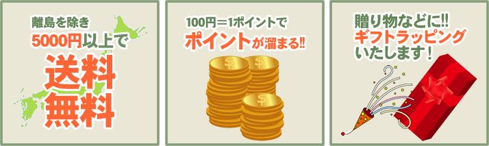 離島を除き5000円以上で送料無料 100円=1ポイントでポイントが溜まる!贈り物などに!!ギフトラッピングいたします!