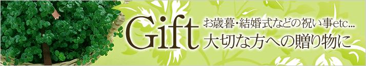 Gift 出産祝い・結婚式などの祝い事etc...大切な方への贈り物に