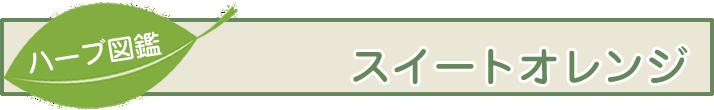 【ハーブ図鑑】スイートオレンジ
