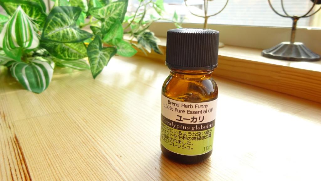 essen-oil-yukari-2014-0220